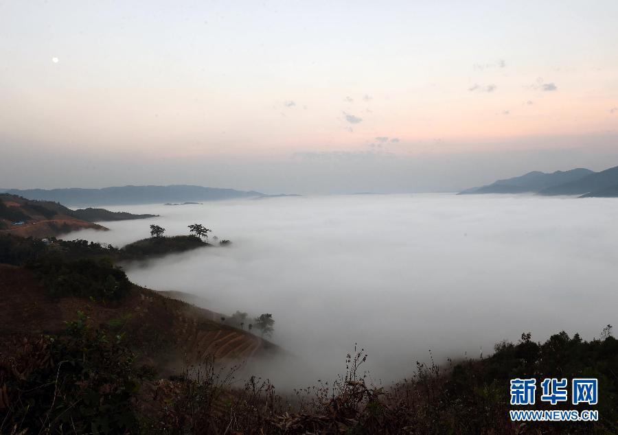 西双版纳基诺山云海
