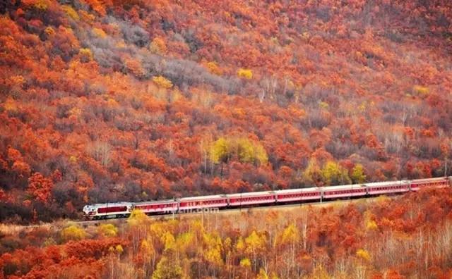 这列开往长白山的绿皮火车,风景美到不敢眨眼睛