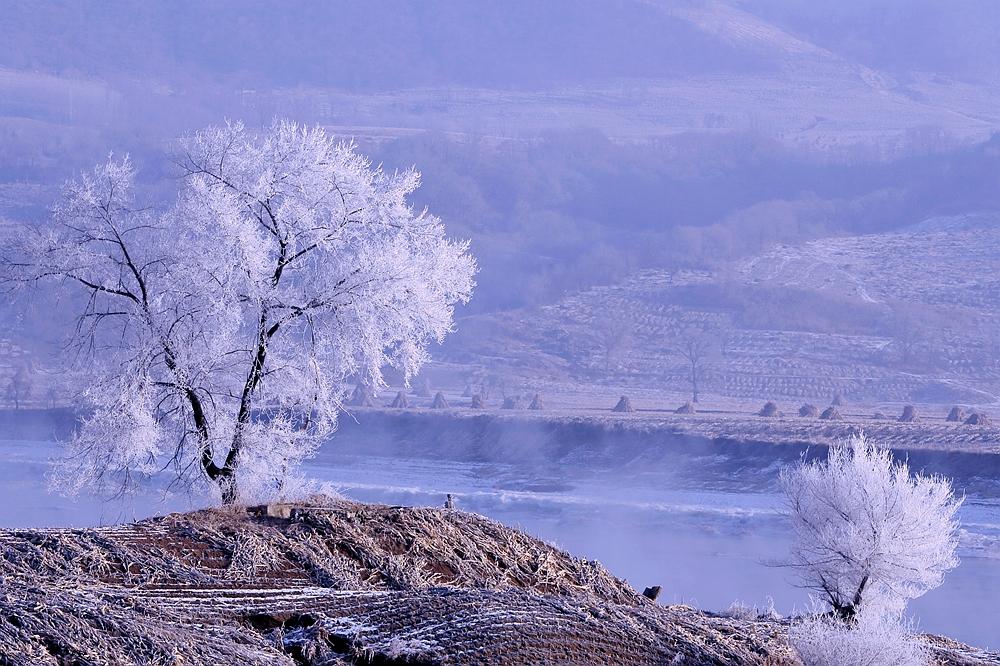 守望。2018年12月31日拍摄于吉林省桦甸市。新华网发 胡红晓 摄