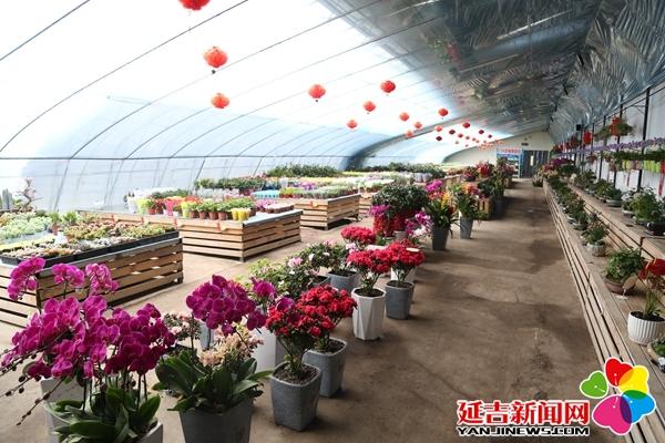 """延吉gdp低_吉林省""""很发达""""的县级市:GDP全省第4,有东北""""小首尔""""之称(2)"""