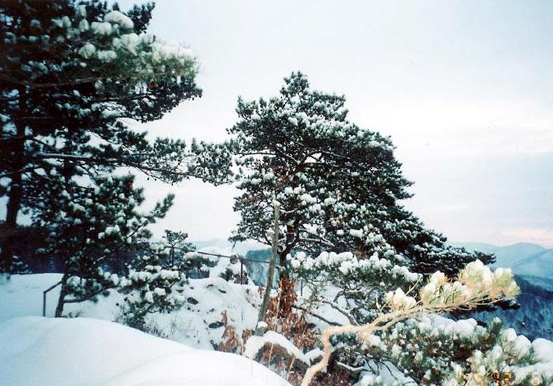 仙景台风景区 - 吉林频道- 吉林新闻