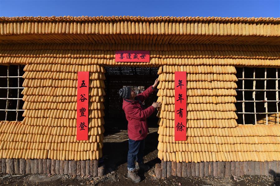 吉林舒蘭:3萬根玉米打造東北農村特色院落景觀