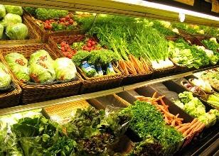吉林省菜价季节性小幅上升