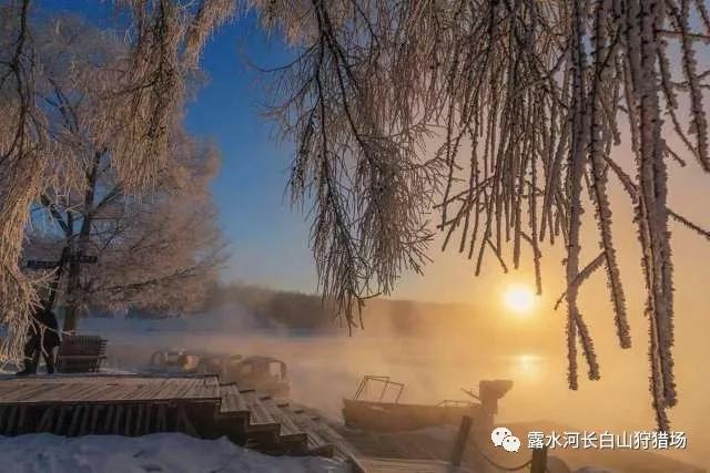 """寒冬臘月中聆聽世界上最美的""""春天"""""""