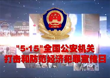 吉林省开展打击和防范经济犯罪宣传日活动