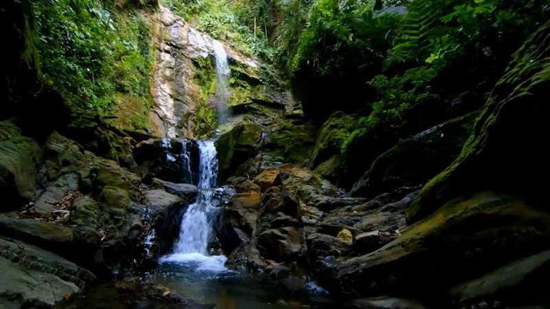 《好好学习》第32课:好山出好水 绿色生态是最大品牌