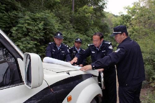 吉林省森林公安3年來破獲涉林案件兩萬余起