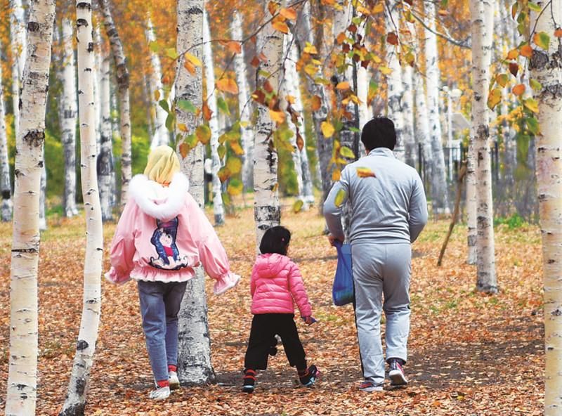 長春南湖公園楓葉美