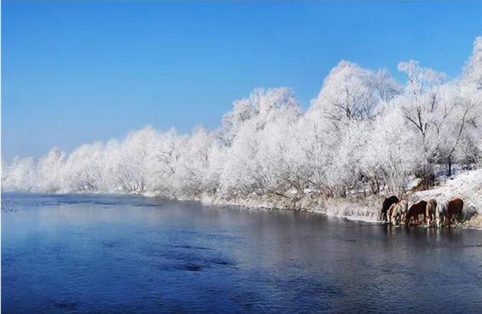 用鏡頭定格美麗的家鄉丨吉林省女攝影家流年碎影70年(47)