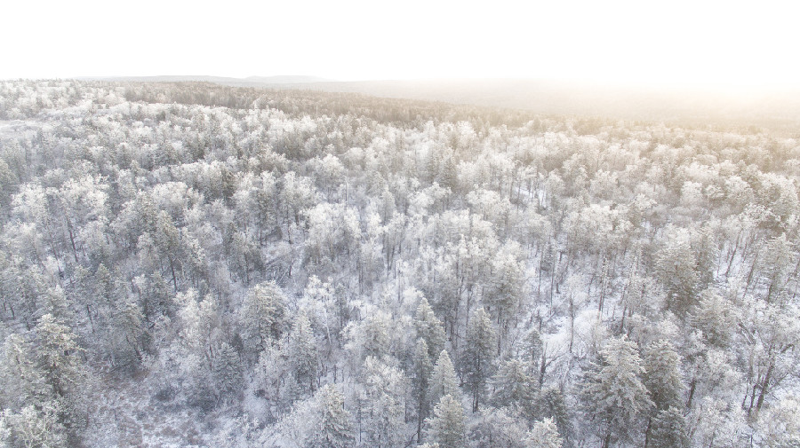 吉林延邊仙峰森林公園出現高山霧凇景觀