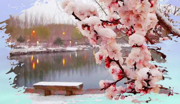 横屏观看丨生态吉林:一场春雪,吉林尽妖娆
