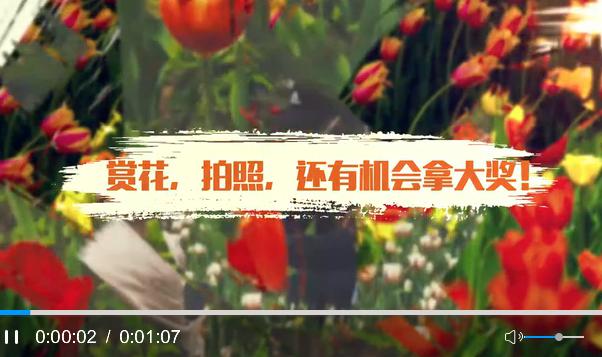 """""""春語綠園·鬱金香之戀""""攝影比賽線上啟動"""