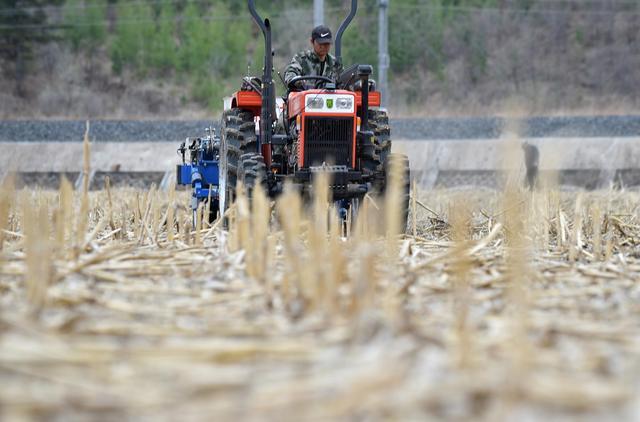 吉林:確保糧食播種面積穩定在8500萬畝