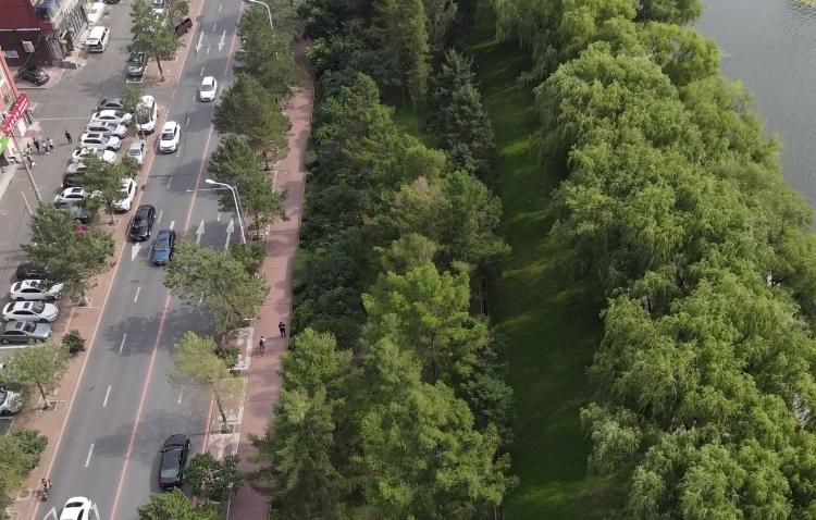 公園拆圍欄 增通道 設綠植綠色更親民