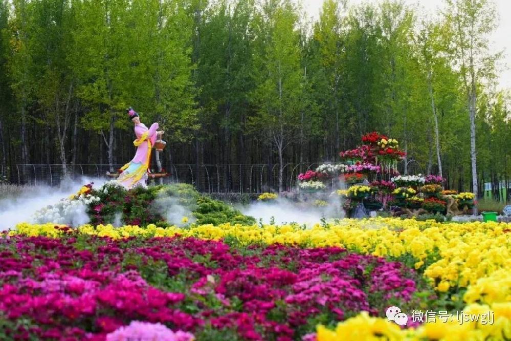 琵岩山文化旅遊風景區第二屆金秋菊花展開展