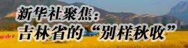 別樣(yang)秋收