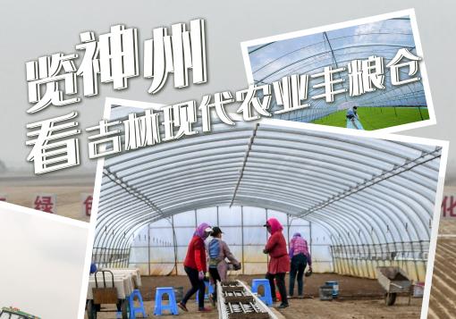 览神州,看吉林现代农业丰粮仓