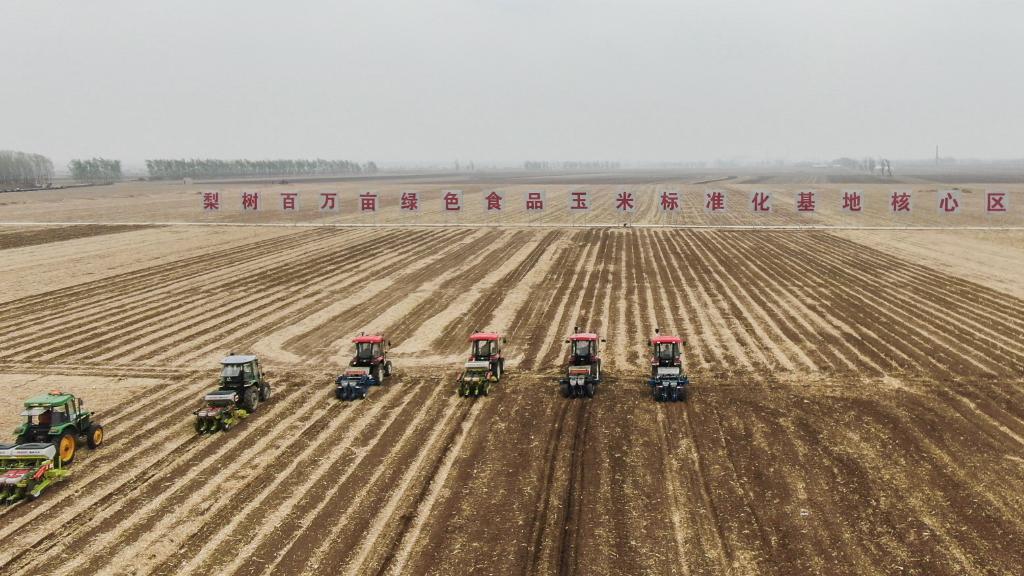 """神州巡礼 吉林:黑土地奏响现代农业""""奋进曲"""""""